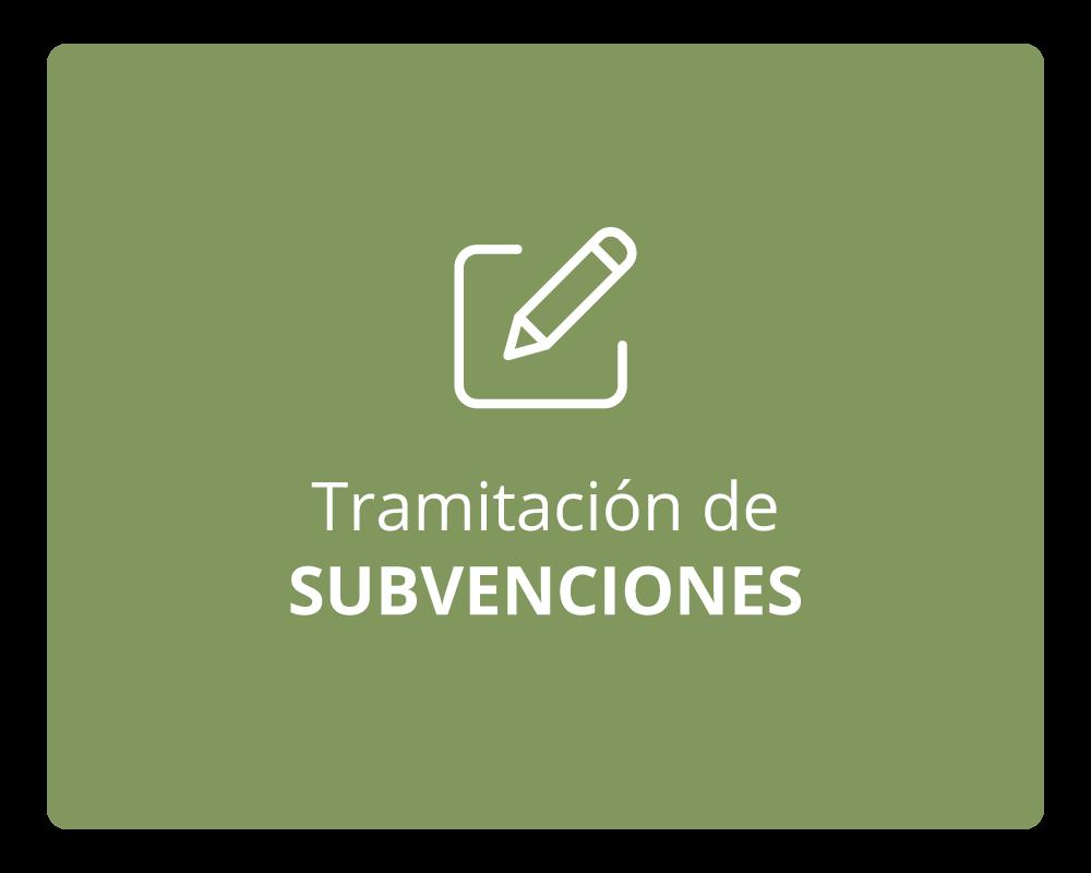 Subvenciones.png